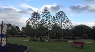 buckboard-park