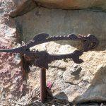 Iron Lizard at Buckboard Park